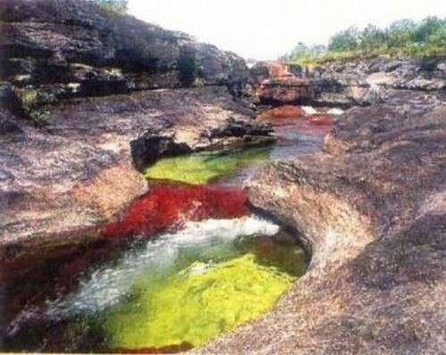 شوفو نهر الخمس اللوان .. سبحان الله river18.jpg